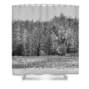 Frozen Shower Curtain by Sebastian Musial