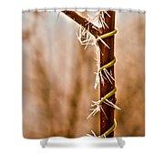 Frozen Spiral Vine Shower Curtain
