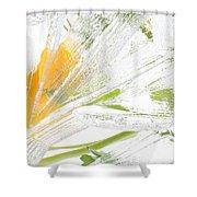 Frozen Spring Vii Shower Curtain