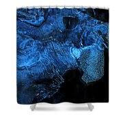Frozen Stone Fish Shower Curtain