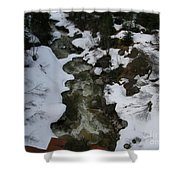 Frozen Stream Shower Curtain