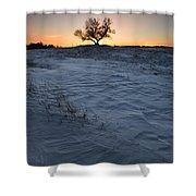 Frozen Tree Of Wisdom Shower Curtain