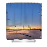 Frozen Trees Shower Curtain