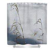 Frozen Wheat Shower Curtain