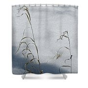 Frozen Wheat Shower Curtain