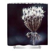Frozen Wisps Shower Curtain