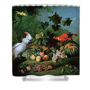 Fruit And Birds Shower Curtain