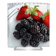 Fruit Iv - Strawberries - Blackberries Shower Curtain by Barbara Griffin