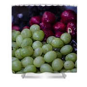 Fruit Mixer Shower Curtain