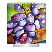 Purple Grapes Shower Curtain