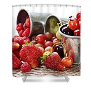 Fruits And Berries Shower Curtain