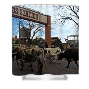 Ft Worth Trail Ride At Ft Worth Stockyard Shower Curtain