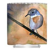 Fuerteventura Chat Shower Curtain