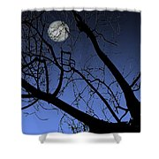 Full Moon And Black Winter Tree Shower Curtain