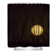 Full Moon Behind The Trees Shower Curtain