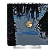Full Moon Palm Tree 5 9/17 Shower Curtain