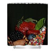 Fun Food Shower Curtain