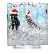Fun Merry Christmas Card Shower Curtain