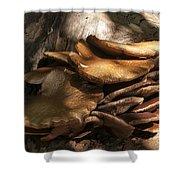 Fungi  Shower Curtain