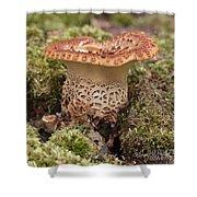 Fungi Wearing Lace Shower Curtain