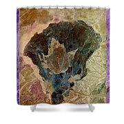 Fungoid Shower Curtain