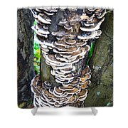 Fungus Invasion Shower Curtain