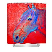 Funky Handsome Horse Blue Shower Curtain