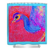 Funky Peacock Bird Art Prints Shower Curtain