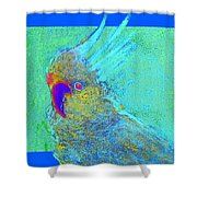 Funky Sulphur Crested Cockatoo Bird Art Prints Shower Curtain