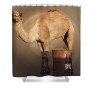 Funny Beduin Camel Talk  Shower Curtain