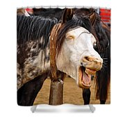 Funny Looking Horse Shower Curtain