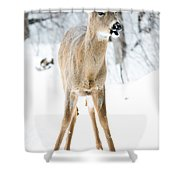 Funny Stance Shower Curtain