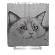 Fur Blankie Shower Curtain