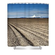 Furrows Shower Curtain