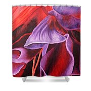 Fuschia Folds Shower Curtain