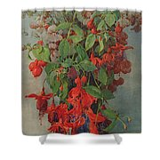 Fushia And Snapdragon In A Vase Shower Curtain