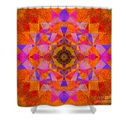 Fushia Yantra Diamond Mandala Shower Curtain