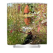 Fuzzy And The Reflected Tree Shower Curtain