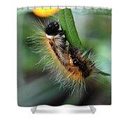 Fuzzy Caterpillar Shower Curtain