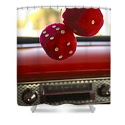 Fuzzy Dice Shower Curtain
