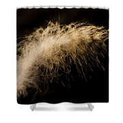 Fuzzy Feather Shower Curtain