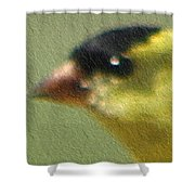 Fuzzy Gold Finch Shower Curtain