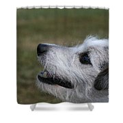 Fuzzy Whiskers Shower Curtain