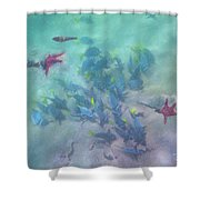 Galapagos Islands From Under Water Shower Curtain