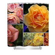Beautiful Roses- A Collage Shower Curtain
