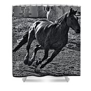Gallop 2 Shower Curtain