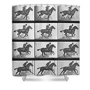 Galloping Horse Shower Curtain by Eadweard Muybridge