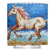 Galloping Horse On Beach Shower Curtain