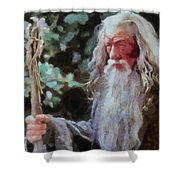 Gandalf The Grey Not Moses Mom Shower Curtain