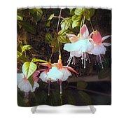 Garden Ballerinas Shower Curtain